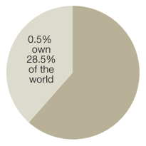 0.5% own 48.5% of total world wealth